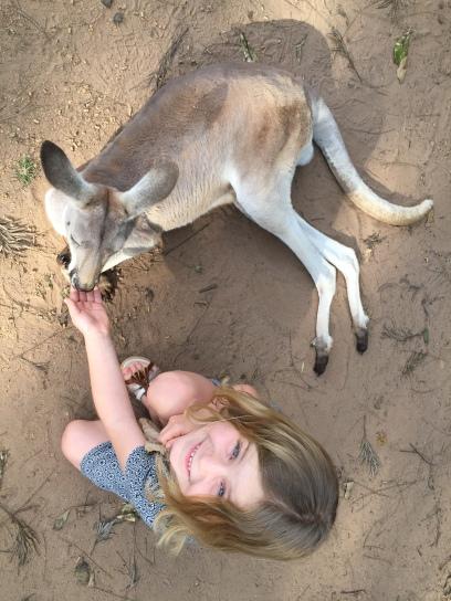 Erstes Känguru gefüttert :o)