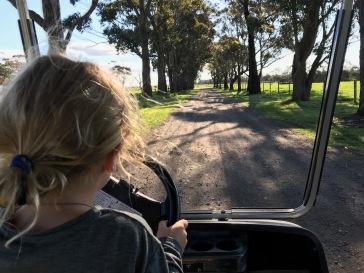 Joy's neue Leidenschaft - Golfbuggy fahren :o)